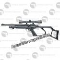 Kit carabine à plombs Umarex RP5 calibre 5.5 mm et Co2
