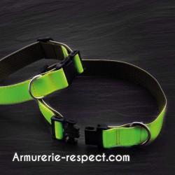 Collier phosphorescent pour chien