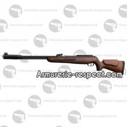 Carabine à plombs 4.5 mm Gamo CFX Royal canon fixe